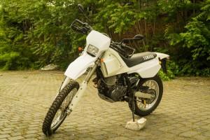 TT600 V